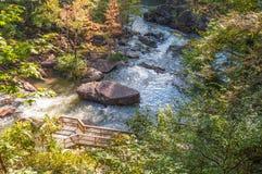 Whitewater en el bosque del Estado de Chattahoochee imagenes de archivo