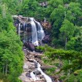 Whitewater fällt in Nord-Carolina stockfotos