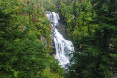 Free Whitewater Falls Royalty Free Stock Photography - 87313157