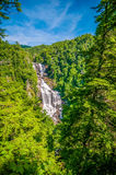 Whitewater Falls in North Carolina Royalty Free Stock Photo