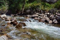 Whitewater flöden över vaggar i bergen Royaltyfri Fotografi