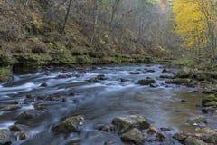 Whitewater flod i höst Fotografering för Bildbyråer