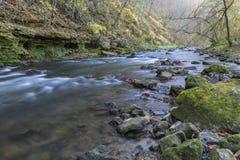 Whitewater flod i höst Arkivfoto