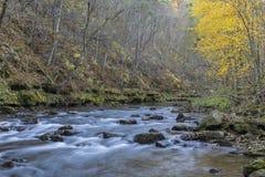 Whitewater-Fluss im Herbst Lizenzfreie Stockfotos