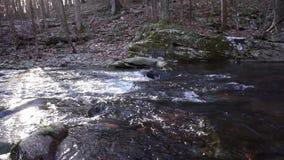 Whitewater haalt onderaan rotsachtig stroombed over stock videobeelden