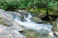 Whitewater in het Nationale Bos van Chattahoochee royalty-vrije stock foto's