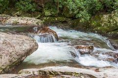 Whitewater in het Nationale Bos van Chattahoochee stock fotografie