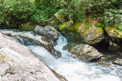 Whitewater in het Nationale Bos van Chattahoochee royalty-vrije stock afbeelding