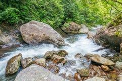 Whitewater i den Chattahoochee nationalskogen arkivfoton