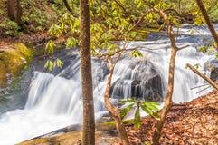 Whitewater i den Chattahoochee nationalskogen arkivfoto