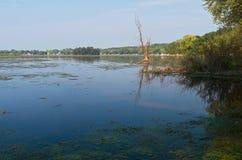 Whitewater Lake Vista stock photos