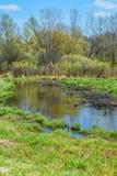 Whitewater liten vik - Walworth County, Wisconsin arkivbild