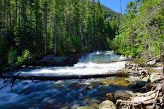 Whitewater in montagne rocciose parco nazionale, Colorado immagini stock libere da diritti