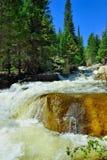 Whitewater in montagne rocciose parco nazionale, Colorado immagini stock