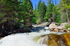 Whitewater in montagne rocciose parco nazionale, Colorado fotografia stock libera da diritti