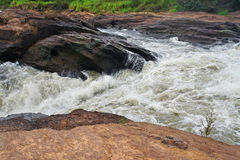 Whitewater at the Murchison Falls Stock Photography