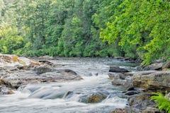 Whitewater no rio de Chattooga Fotografia de Stock