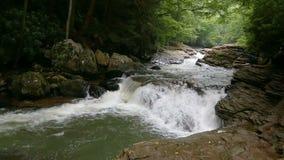Whitewater op weide stelt lijn in werking - Ohiopyle-het Park van de Staat, Pennsylvania stock videobeelden