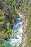 Whitewater, parque estadual, Geórgia Imagens de Stock Royalty Free
