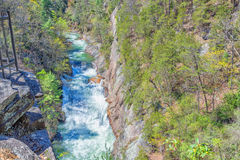Whitewater, parque estadual, Geórgia Imagem de Stock Royalty Free