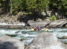 Whitewater rafting på forsarna royaltyfri fotografi
