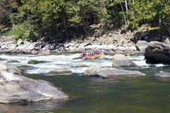 Whitewater rafting på forsarna arkivbild
