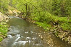 Whitewater River Spring Stock Images