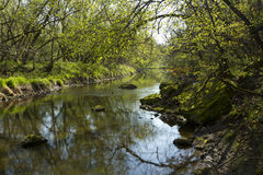 Whitewater River In Spring Royalty Free Stock Photos