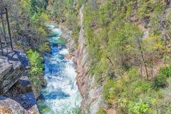 Whitewater, State Park, Georgia Royalty Free Stock Image