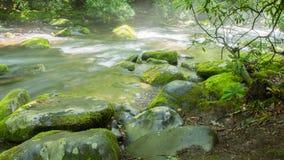 Whitewater stream. Royalty Free Stock Photo