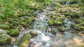 Whitewater stream. Stock Photos