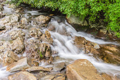 Whitewater stream. Royalty Free Stock Photography