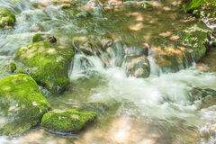 Whitewater strumień Fotografia Royalty Free