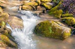 Whitewater strumień Zdjęcia Stock