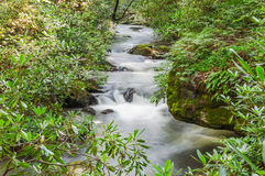 Whitewater, trout stream in Chattahoochee National Forest. Coleman River, North Georgia Mountains. A popular trout stream royalty free stock photo