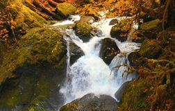 Whitewater Wonder. Autumn scene at Lower House Rock Falls - on the South Santiam River - near Upper Soda, OR Royalty Free Stock Image