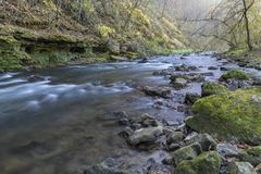 Whitewaterrivier in de Herfst Stock Foto