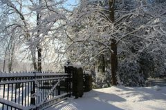Whitey vinter på Boston royaltyfri fotografi