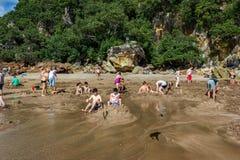 WHITIANGA, NZL - 07 Maart 2016: Bezoekers die kleine warm waterpools in Warm waterstrand maken stock afbeeldingen