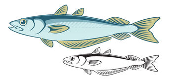 Whiting Stock Image