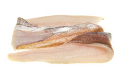 Whiting fillets. Fresh whiting fish fillets isolated on white royalty free stock image