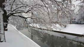 Whitness - rio Miljacka durante o inverno em Bósnia Foto de Stock Royalty Free