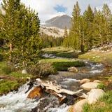 Whitney liten vik, toppig bergskedja Nevada royaltyfria foton