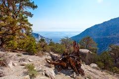 Whitney Portal area-Meysan Lakes Trail- Inyo National Forest,- CA- . Stock Photos