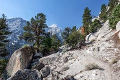 Whitney terenu jezior śladu Inyo Wrotny las państwowy, - CA Obraz Royalty Free