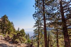 Whitney terenu jezior śladu Inyo Wrotny las państwowy, - CA Zdjęcie Stock