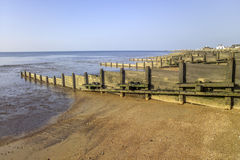 Whitstable. Groynes on the shingle beach at whitstable kent Royalty Free Stock Images