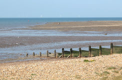 Whitstable Beach. This photo shows Whitstable Beach and breakwater Stock Image