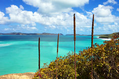 Whitsundays. Whitehaven Beach in the Whitsunday islands in Australia Stock Photo