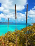 Whitsundays Royalty Free Stock Images